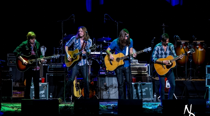 A Thousand Horses Shine in Keene New Hampshire